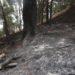 Identifican a un vecino de Estella como presunto autor de varios incendios forestales en la zona media