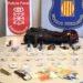 Desarticulan una banda que robó en varios domicilios de Tierra Estella