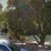Encuentran el cadáver de un hombre en Estella-Lizarra