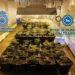 Desmantelado un punto de venta de drogas en Tierra Estella
