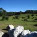 Explotaciones de montaña en Tierra Estella se benefician de ayudas para Desarrollo Rural